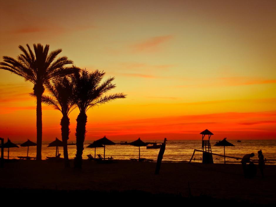 остров джерба тунис фламинго